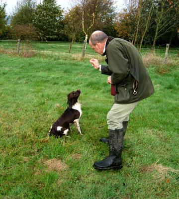 James McKay dog training